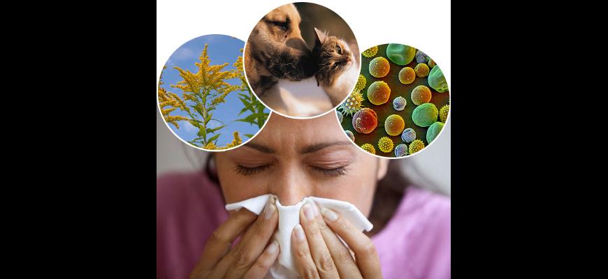 аллергоспецифическая иммунотерапия